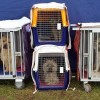 The Use of Heavy Duty Dog Crates